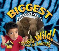 Biggest Animals