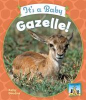 It's A Baby Gazelle!