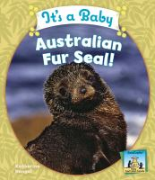 It's A Baby Australian Fur Seal!