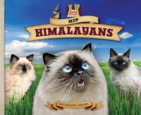 Hip Himalayans