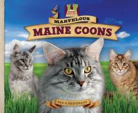 Marvelous Maine Coons