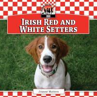 Irish Red and White Setters