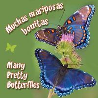 Muchas mariposas bonitas