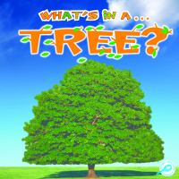 What's in A-- Tree?