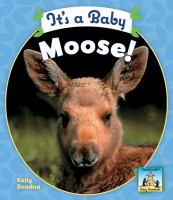 It's A Baby Moose!
