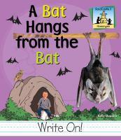 A Bat Hangs From the Bat
