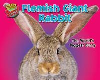 Flemish Giant Rabbit