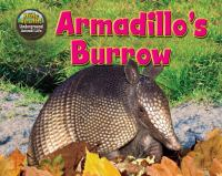 Armadillo's Burrow