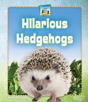 Hilarious Hedgehogs
