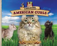 Amazing American Curls