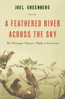 A Feathered River Across The Sky
