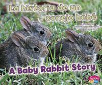 La Historia De Un Conejo Bebé