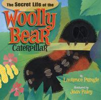 The Secret Life of the Woolly Bear Caterpillar
