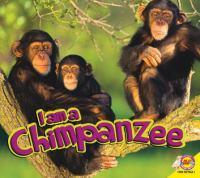 I Am A Chimpanzee