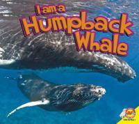 I Am A Humpback Whale