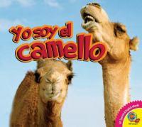 Yo soy el camello