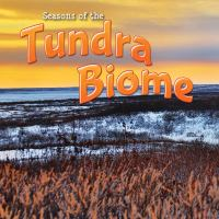 Seasons of the Tundra Biome