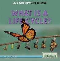 What Is A Life Cycle?