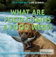What Are Food Chains & Food Webs