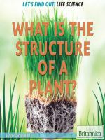 What Is the Structure of A Plant?