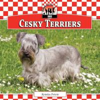 Cesky Terriers