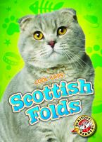 Scottish Folds