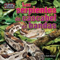 Las serpientes de cascabel de bandas