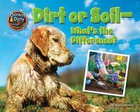 Dirt or Soil