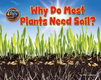 Why Do Most Plants Need Soil