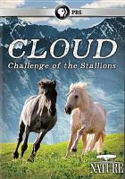 Cloud, Challenge of the Stallions
