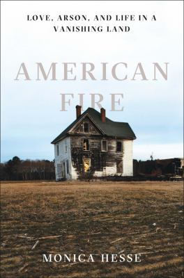 Cover image for American Fire