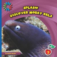 Discover Moray Eels