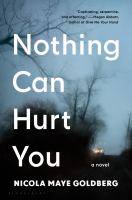 Nothing-can-hurt-you-:-a-novel-