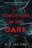 Somewhere in the dark : a novel