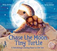Chase the Moon, Tiny Turtle