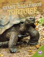 Giant Galápagos Tortoise