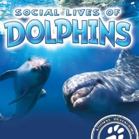 Social Lives of Dolphins