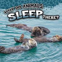 Why Do Animals Sleep There?
