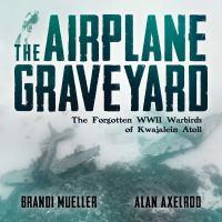 The Airplane Graveyard