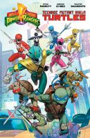 Mighty Morphin Power Rangers Teenage Mutant Ninja Turtles