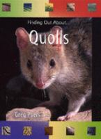 Quolls