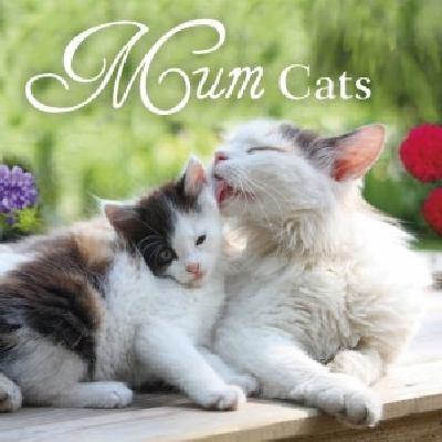 Mum cats.
