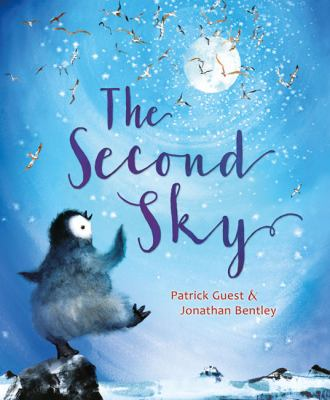 Cover image for The Second Sky