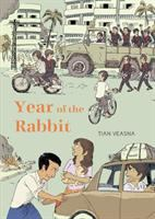 Cover of Year of the Rabbit