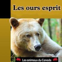 Les ours esprits