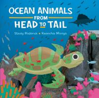 Ocean Animals From Head to Tail