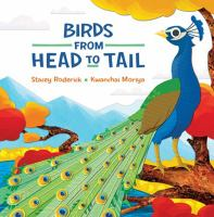 Birds From Head to Tail