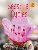 Seasonal Cycles