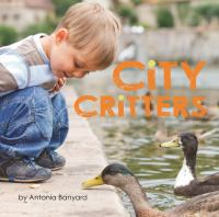 Cover of City Critters