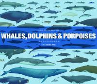 Whales, Dolphins & Porpoises